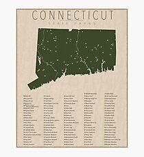 Connecticut Parks Photographic Print