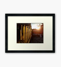 Backyard Framed Print