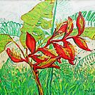 Thai Tropical Flowers by James Lewis Hamilton
