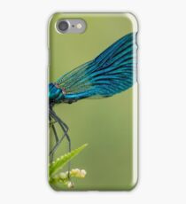 Beautiful  Banded Demoiselle( Calopteryx splendens) belonging to the family Calopterygidae.  iPhone Case/Skin