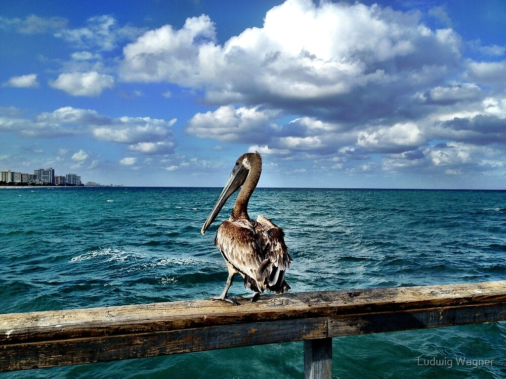 Lauderdale-by-the-Sea, Florida by Ludwig Wagner