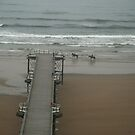 saltburn pier in the fog by dougie1