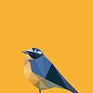 Bird by Marco Recuero