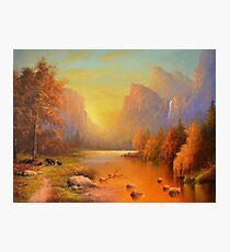 Three Bears Yosemite Photographic Print