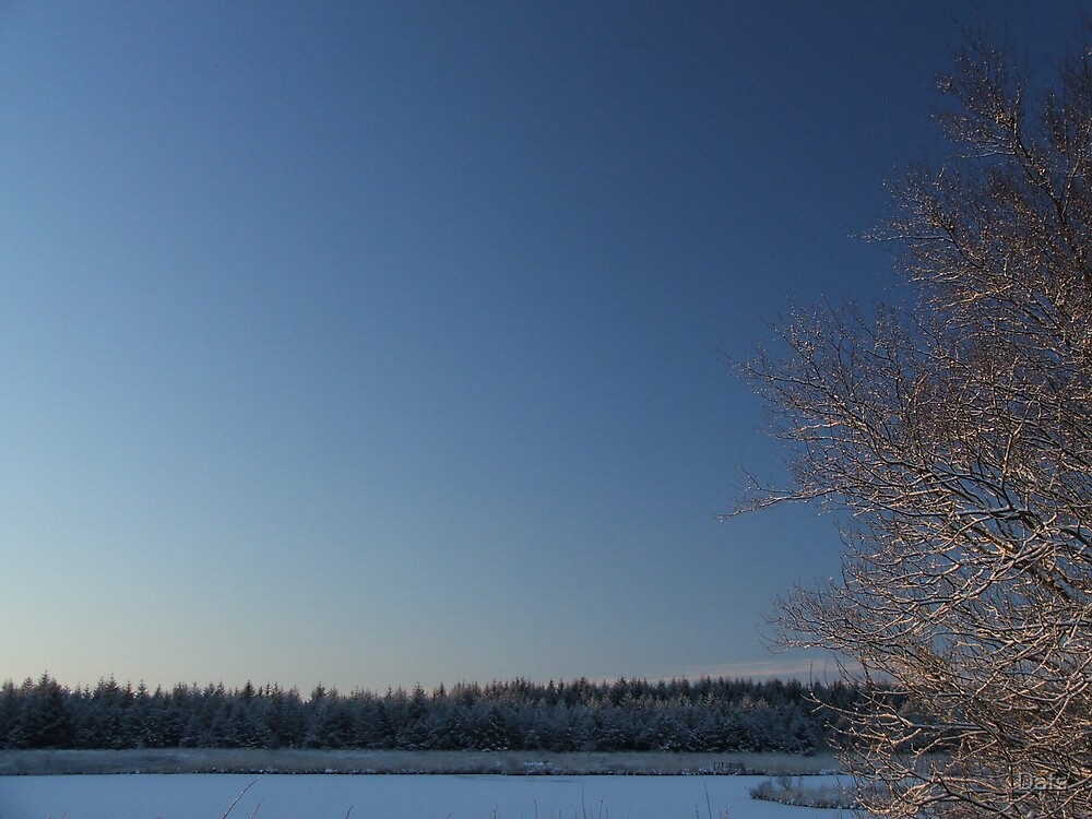 Frosted skyline by Dafs