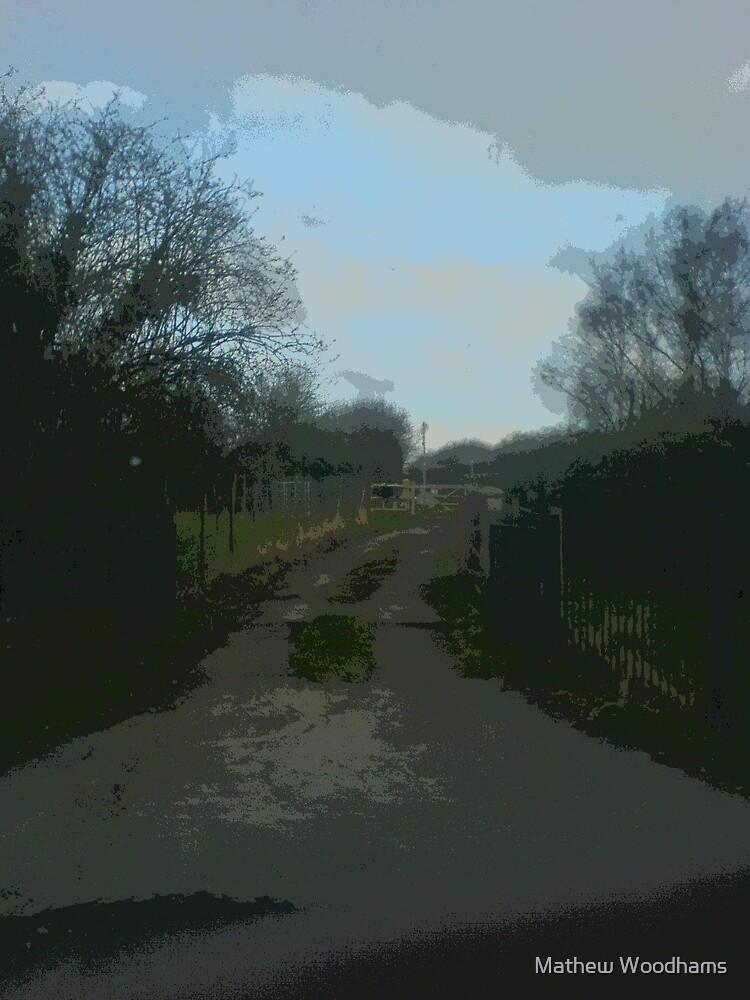 The Path We Walk by Mathew Woodhams