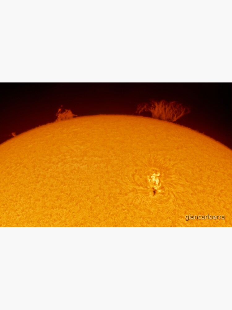 Sun spot and flares in Hydrogen Alpha by giancarloerra