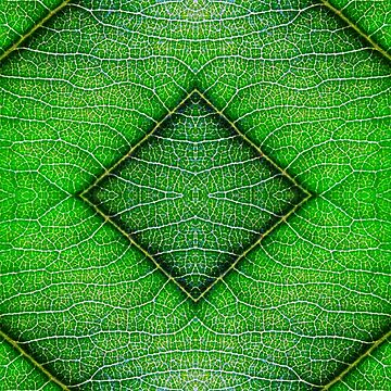 leafy by JeBoyLenn