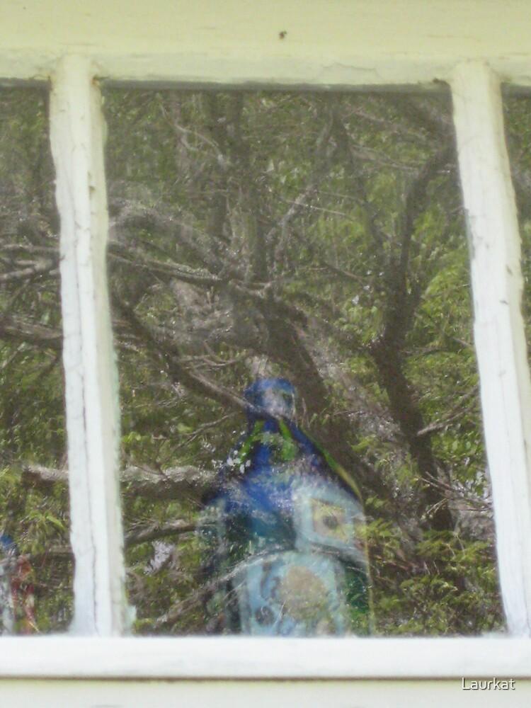 arts center windowshow by Laurkat