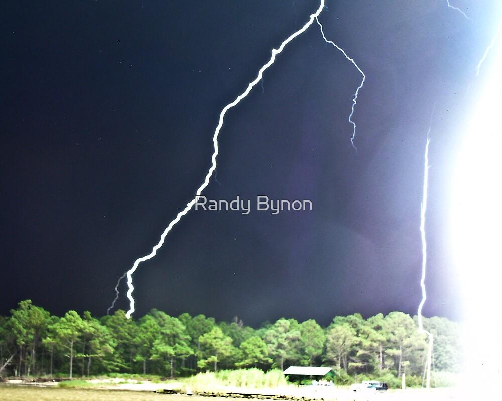 Close Call by Randy Bynon