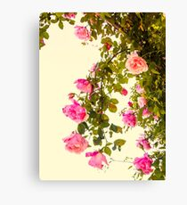 Vintage Hanging Roses Canvas Print
