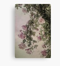 Textured Hanging Roses Canvas Print
