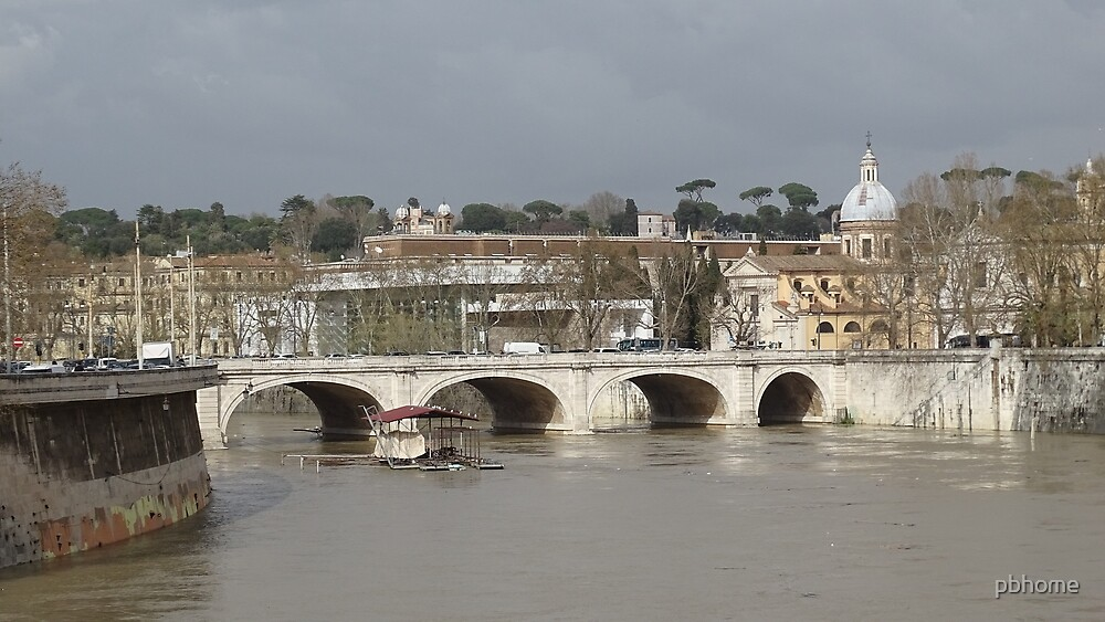The Tiber in flood in March 2015 by pbhome