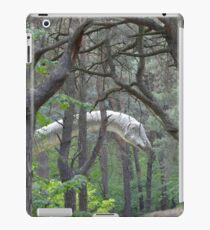 Diplodocus iPad Case/Skin
