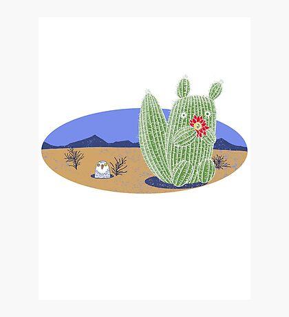 Squirrel Cactus  Photographic Print