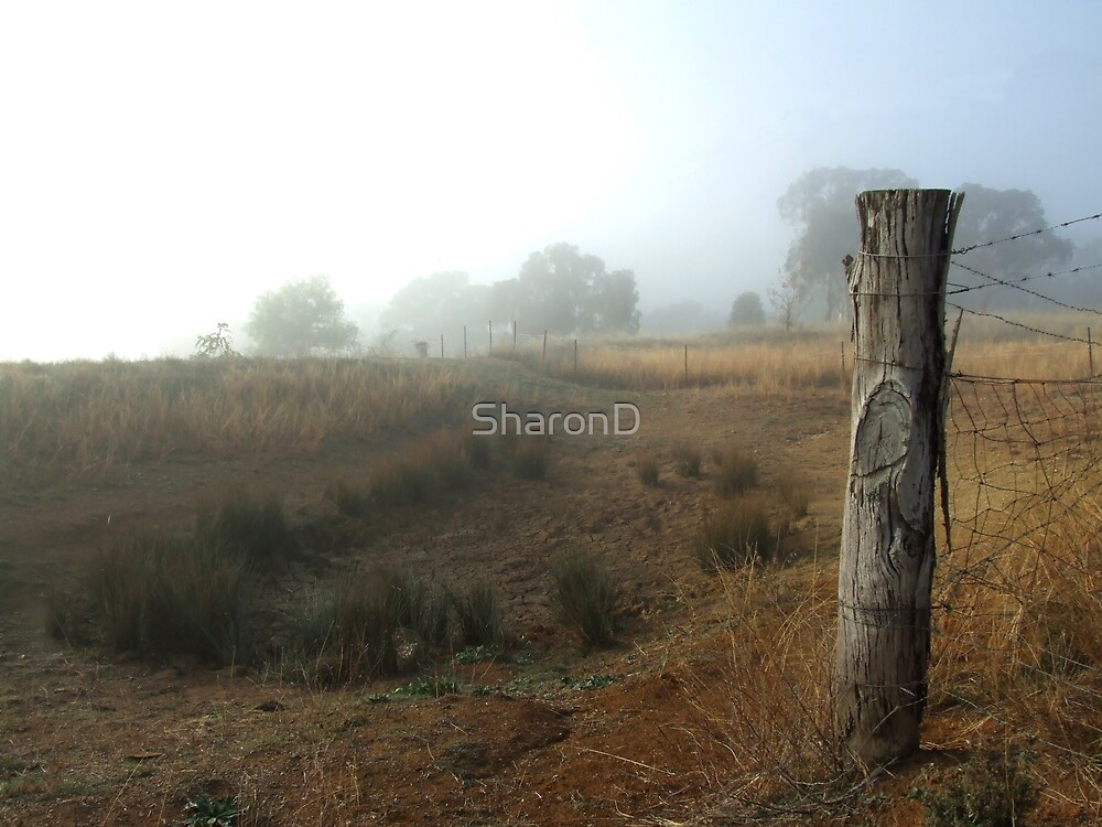 No Water,Just Fog by SharonD