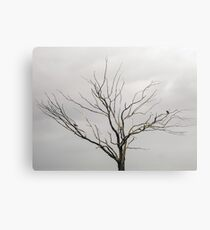 Tree without foliage Canvas Print