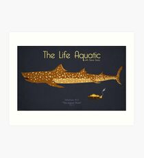 The Life Aquatic - Jaguar Shark Art Print