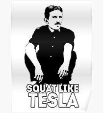 Tesla Squating Poster