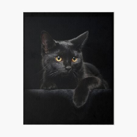 Black Cat Art Board Print