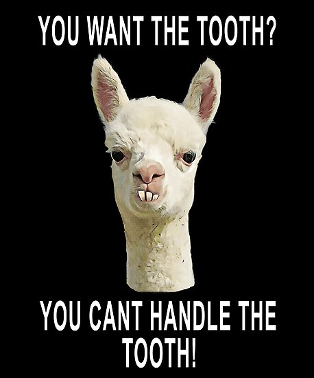 Quot You Can T Handle The Tooth Joke Llama Funny Design