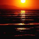 Sunset Vertorama by Ryan Houston