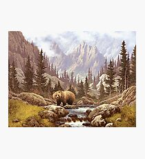 Grizzly Bear Landscape Photographic Print