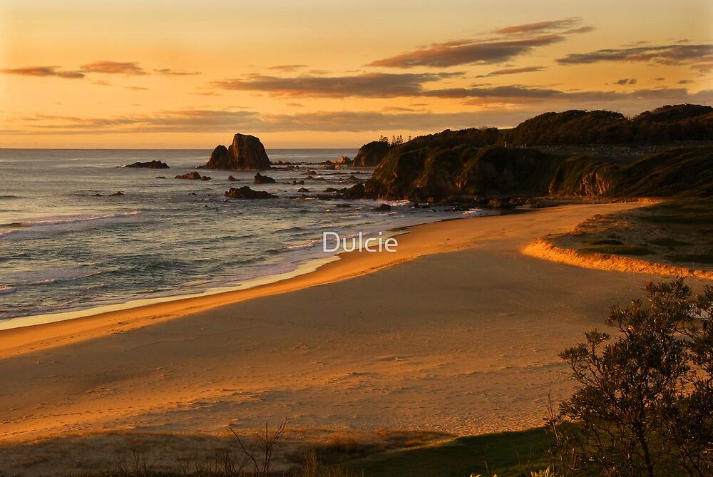Narooma Beach by Dulcie