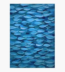 Shimmer Shoal in Blue Photographic Print