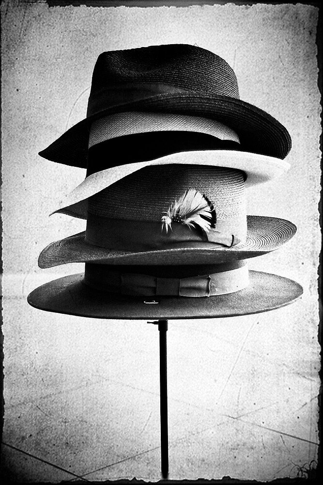 Fedora Collection by Janis Lee Colon