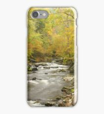 Little River Road iPhone Case/Skin