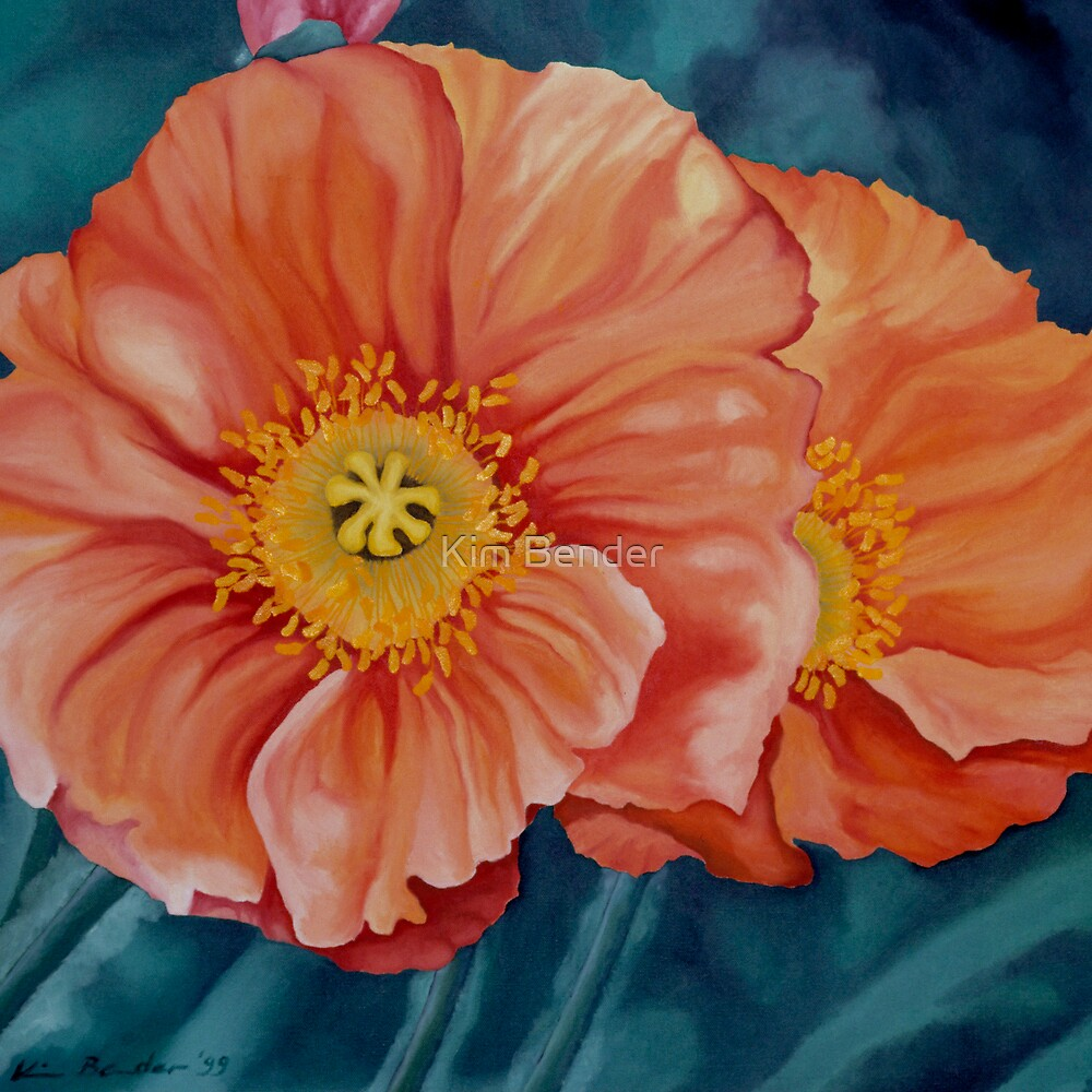 California Poppies by Kim Bender