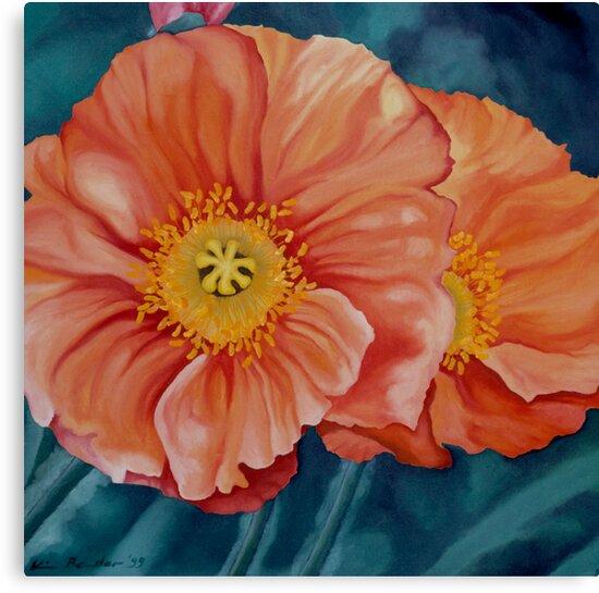 California Poppies by Kim Bender
