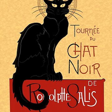 Chat Noir by keltickat