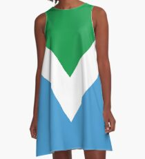 International Vegan Flag 2 A-Line Dress