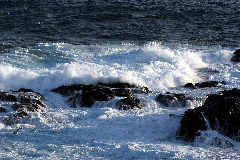 Bass Strait Waves by Dave Law