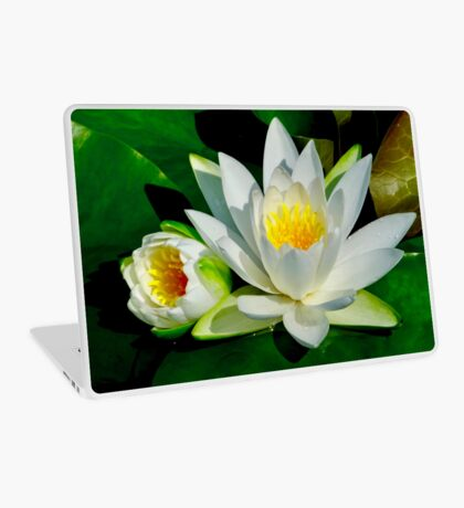White Water Lily and Bud on Lily Pad Laptop Skin