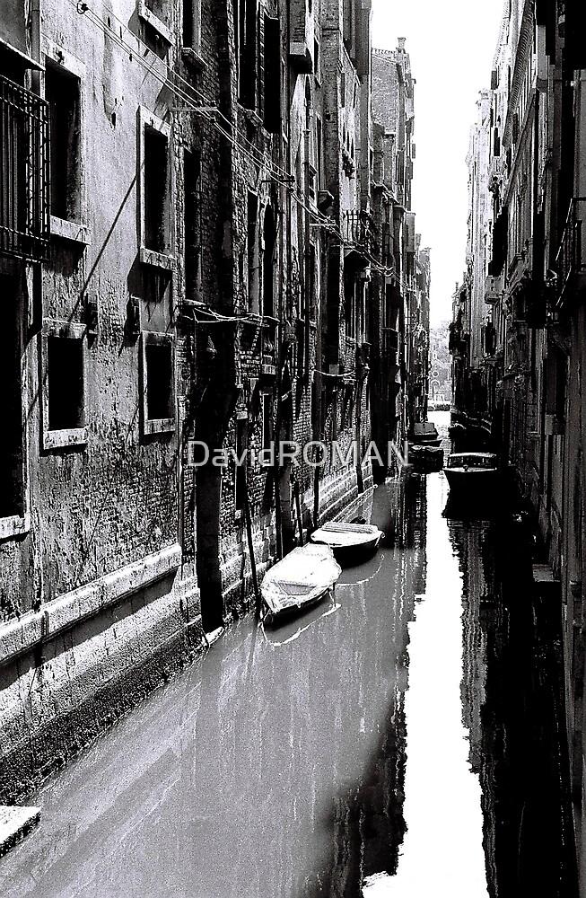Reflective White Water by DavidROMAN