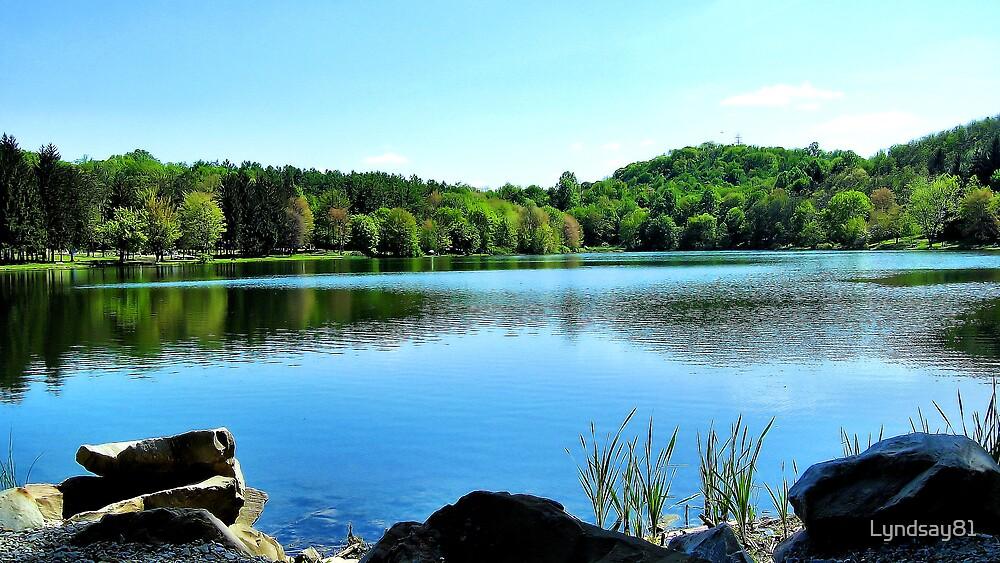 Across The Lake by Lyndsay81