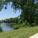 St Joe River, South Bend, IN by Sumaridel
