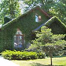 Ivy covered cottage by Sumaridel