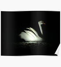 stone swan Poster