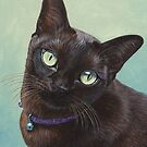 Black Burmese Cat Moose - Square by artbyakiko