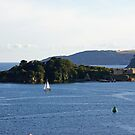 Plymouth Sound by Steven Guy