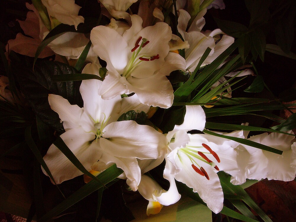 """""""Autumn Bouquet. . ."""" by lurline"""