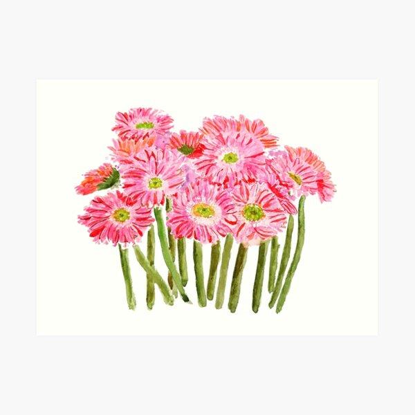 Pink Barberton Daisy Gerbera Watercolor Gerbera daisy  Art Print