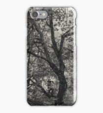 12.7.2017: Tree at the Garden of Oblivion iPhone Case/Skin