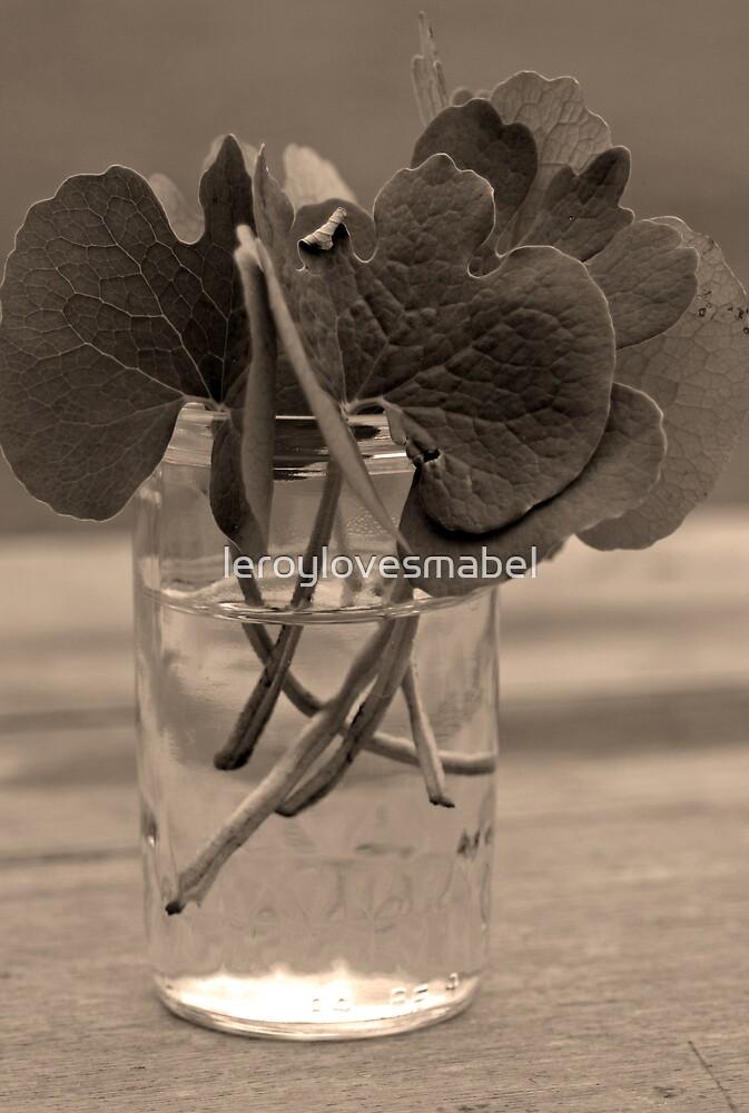 leaves by leroylovesmabel