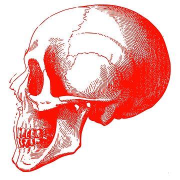 Red Skull by bandsnthings