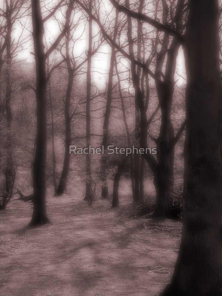 A Dream In The Woods by Rachel Stephens